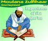 Importance of the Qur'an